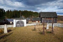 Svala Slovakien fotografering för bildbyråer