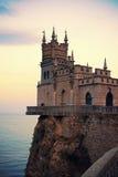 Svalan bygga bo, Yalta, Crimea royaltyfri foto