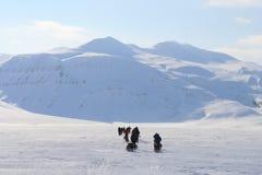 Svalbard Norge Royaltyfri Foto