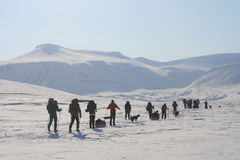 Svalbard Noruega Fotografia de Stock Royalty Free