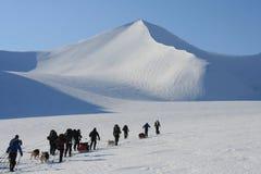 Svalbard Norwegen Stockbild