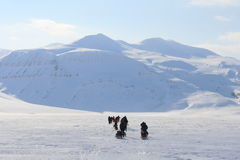 Svalbard Norwegia Zdjęcie Royalty Free