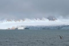 Svalbard Spitzbergen Glacier landscape. Svalbard Spitzbergen Islands Glacier view with small iceberg Royalty Free Stock Photography