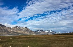 Svalbard summer view royalty free stock photography