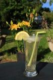 svalna den långa sommaren för drinken Arkivfoto