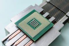 svalnande passivt processorelement Royaltyfri Foto