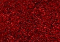 svamp abstrakt textur Royaltyfri Fotografi