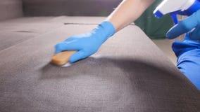 svampar för flytande för cleaningbegreppsdishwashing Arbetaren för den unga mannen gör ren soffan i rummet eller kontoret arkivfilmer