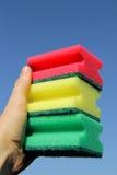 Svampar för tvättande disk Royaltyfri Bild