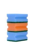 svampar tre Arkivbild