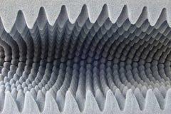 svampstruktur Arkivfoton
