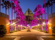 Svan- och delfinhotell, Disney värld Arkivbild