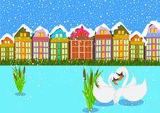 Svan på vinterplats Royaltyfria Bilder