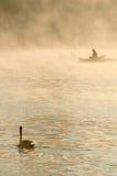 Svan som ser på en fiskare, Prague, Tjeckien Arkivfoton