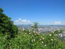 Svan wierza w na wolnym powietrzu muzeum etnografii i Tbilisi pejzaż miejski na tle Miasto widok od góry Mtatsminda, Tbilisi, zdjęcie stock