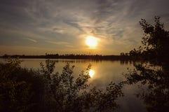 Svanar av solnedgången Royaltyfria Foton