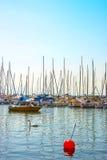 Svanar och fartyg i marina i Genève sjöfjärd härbärgerar i Lausanne, royaltyfria bilder
