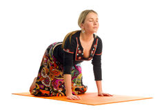 Svanasana, a position in Yoga, is also called dog tilt pose Royalty Free Stock Photo