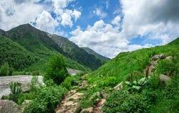 Svaneti mountains. Green grass on hills in Caucasus mountain. Svaneti nature landscape, Georgia stock image