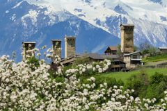 Svanetian towers in spring blossom. Svanetian towers against blue mountains in spring blossom Royalty Free Stock Photos