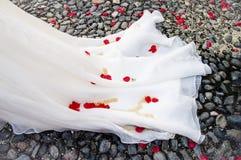 Svans av den vita klänningen för brud` s med röda roskronblad och ris royaltyfria bilder