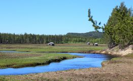 Svansele Dammaenger, eine ehemalige Wasserwiese in Schweden Es ist jetzt ein Naturreservat Lizenzfreies Stockfoto