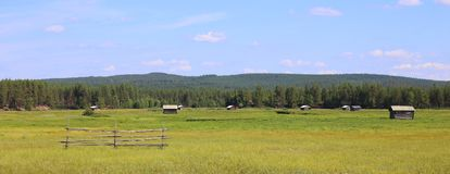 Svansele Dammaenger, un agua-prado anterior en Suecia Ahora es una reserva de naturaleza Imagen de archivo libre de regalías