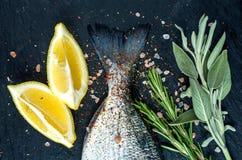 Svansen av nya rå Dorado eller fisken för havsbraxen på svart kritiserar stenbrädet med kryddor, örter, citron och saltar arkivfoton