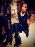 svart änka Royaltyfria Foton