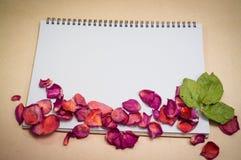 Svart anteckningsbok Realistisk mallanteckningsbok Design för tom räkning Royaltyfri Fotografi