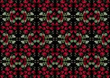 Svart bakgrund från girlander av röda rosor Arkivfoto