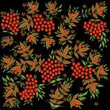 Svart bakgrund med rönnbäret och sidor Arkivbild