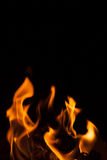 Svart bakgrundsflammaform Royaltyfria Bilder