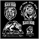 Svart björn för logo, emblem för sportlag, designbeståndsdelar och etiketter Arkivfoto