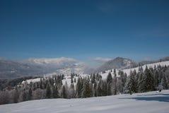 svart blått footwayfotolandskap tonade vita vinterträn Royaltyfri Bild