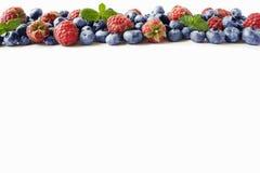 Svart-blått och röda bär Mogna hallon, blåbär med mintkaramellen på vit bakgrund Bär på gränsen av bilden med kopieringsspac Royaltyfri Bild