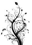 svart blom- white för backgound Arkivfoton