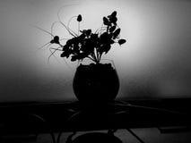 svart blomma Arkivbild