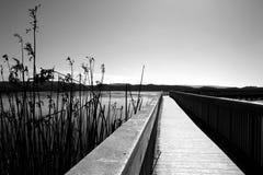 svart boardwalkwhite Arkivfoto