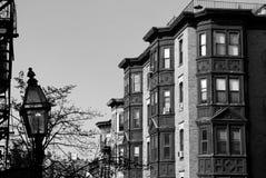svart boston klassisk white Royaltyfri Bild