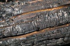 Svart br?nd till kol tr?yttersida Naturlig bakgrund och textur av det br?nda barrtr?det arkivfoton