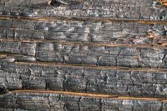 Svart br?nd till kol tr?yttersida Naturlig bakgrund och textur av det br?nda barrtr?det royaltyfri bild