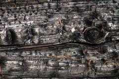 Svart br?nd till kol tr?yttersida Naturlig bakgrund och textur av det br?nda barrtr?det royaltyfria foton