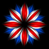 svart brittisk färgflaggablomma