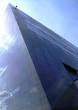 svart copenhagen diamant för 09 Royaltyfria Bilder