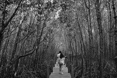 Svart djungel Arkivfoto