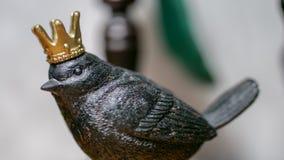 Svart fågel för porslin med kronan royaltyfri fotografi