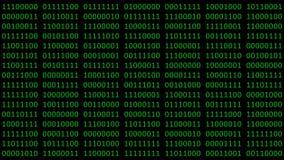 Svart för binär kod och grön animering lager videofilmer