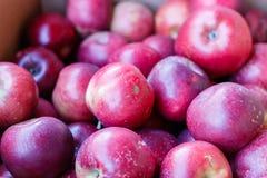 Svart fattar äpplen Royaltyfria Bilder