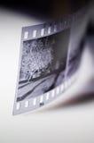 svart filmwhite arkivbilder